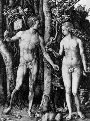 durer_albrechtxxadam_and_eve