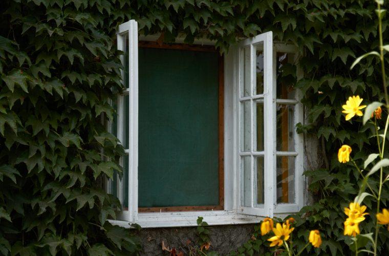 Descoperă Moara de hârtie şi Casa Memorială Gellu Naum