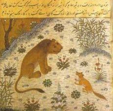 Povestea bibliotecii disparute, din vremea califului Al Hakam al II-lea