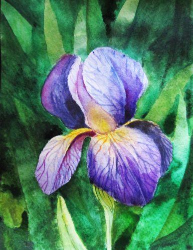 curs ilustraţie flori