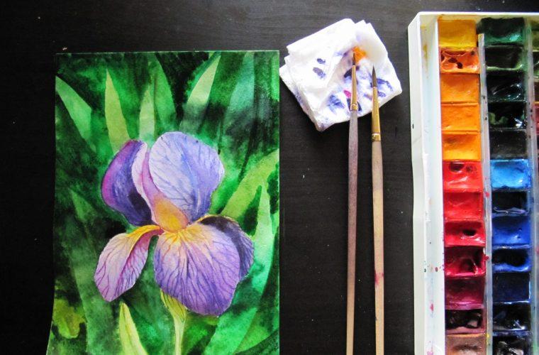 Cum pictez o floare de iris? – Tutorial de ilustraţie decorativă