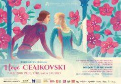 concert ceaikovski
